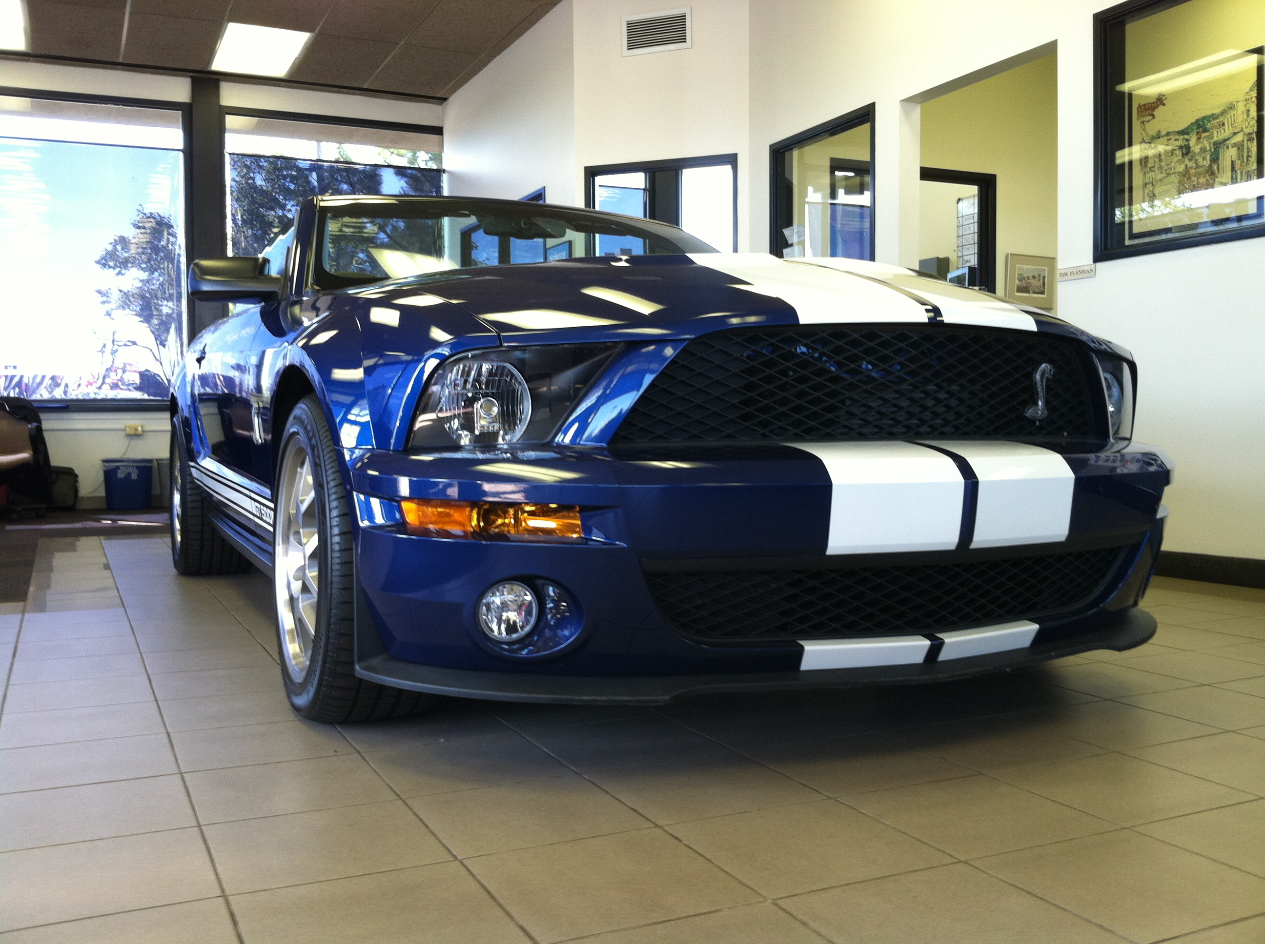 b567fcad North Brothers Chronicle: 2009 Shelby Cobra GT500 - North Brothers Ford